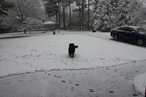 Als es anfing, zu schneien