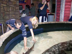 Gesa und Adam streicheln einen Hai