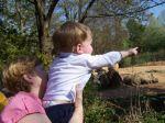 Eston hat die Zebras und die Giraffen entdeckt