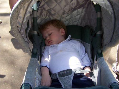 Jemand war nach dem Ausflug ziemlich müde