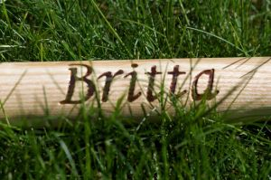 Britta im Gras 2