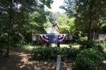 Eine amerikanische Ente in der Nachbarschaft