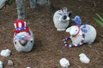 Eine amerikanische Schaffamilie in derNachbarschaft